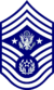 E-9 Chief Master Sergeant of the Air Force